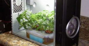 Grow Box con un Pc - Ecco come fare